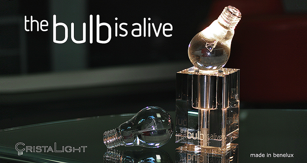 TheBulbIsAlive-980x520
